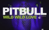 Pitbull - Wild Wild Love feat. G.R.L.