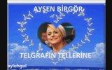 Ayşen Birgör - Telgrafın Tellerine