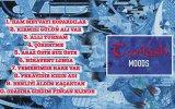 Turkish Moods - Allı Turnam